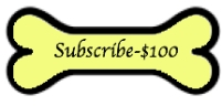 100-dollar-subscribe