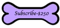 250-dollar-subscribe