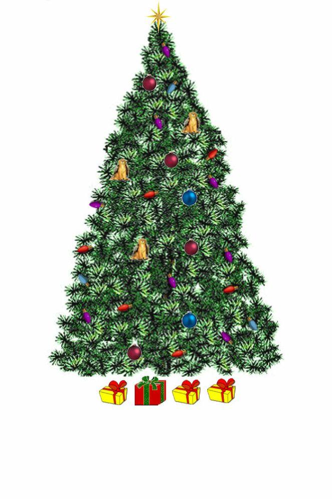 2019 Tree